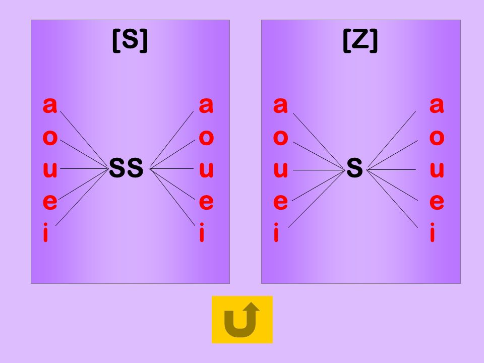 règle1 [S] a a. o o. u SS u. e e. i i. [Z] a a. o o. u S u.